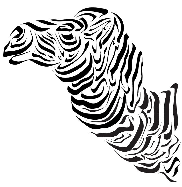 camelo02_vetor