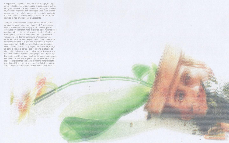 imagem81