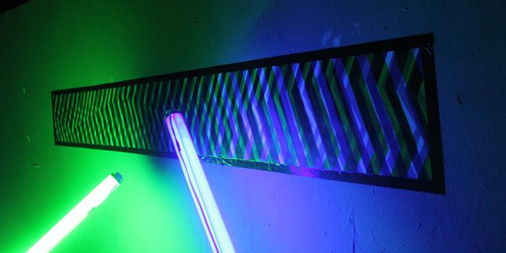 luz.pig01